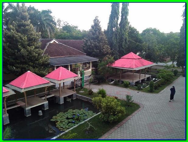 Pondok Pesantren Darul Istiqomah Bondowoso